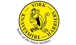 Brass Monkey Half Marathon